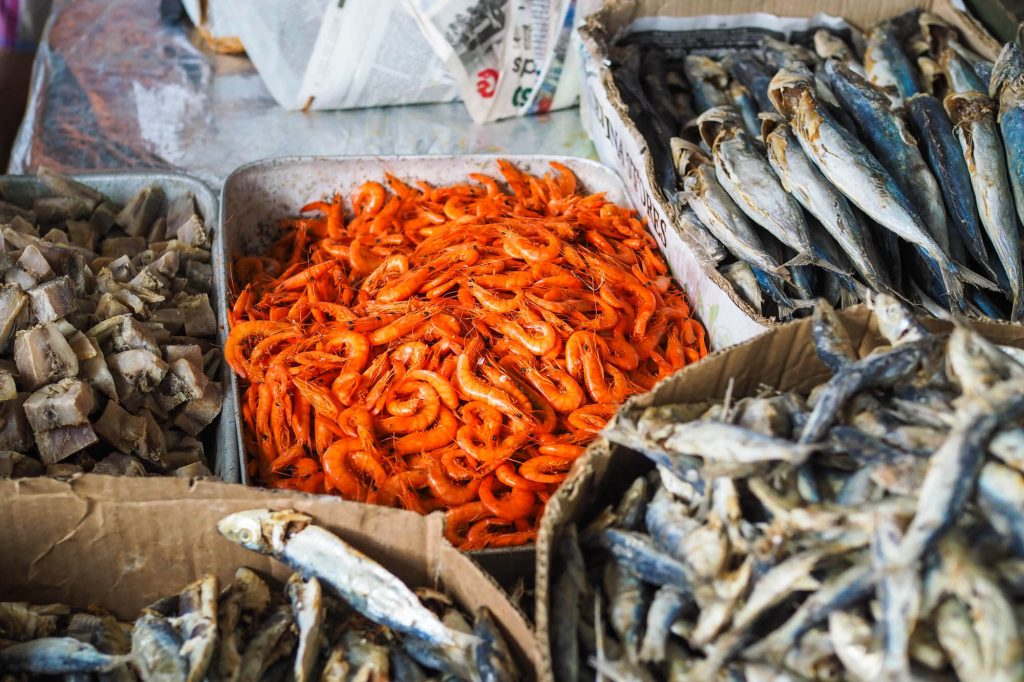 Fish, Sri Lanka - Travel photographer