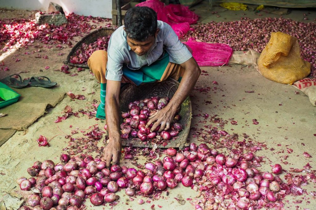 Onions, Sri Lanka - Travel photographer