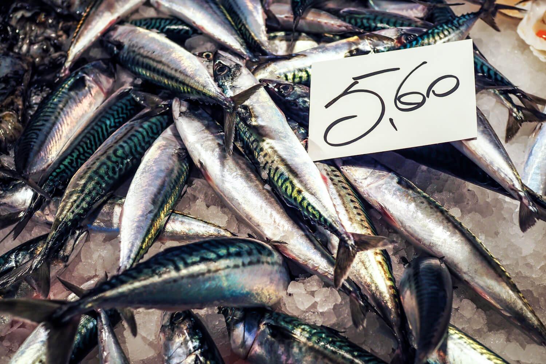 Venice,mackerel, travel photography