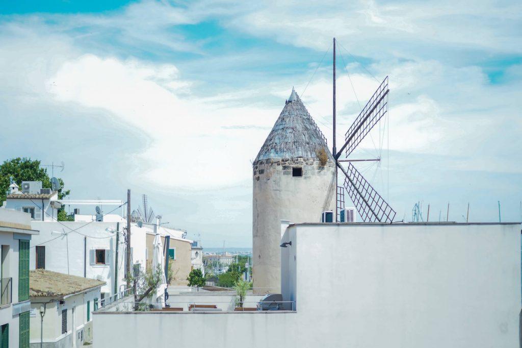 Windmill, Palma- Food photographer